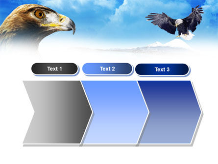 Eagles PowerPoint Template Slide 16