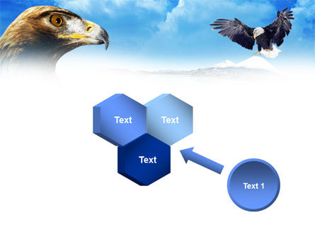 Eagles PowerPoint Template Slide 19
