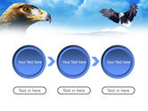 Eagles PowerPoint Template#5