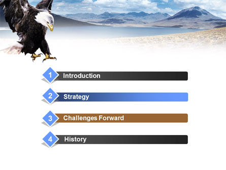 North American Eagle PowerPoint Template, Slide 3, 00863, Animals and Pets — PoweredTemplate.com