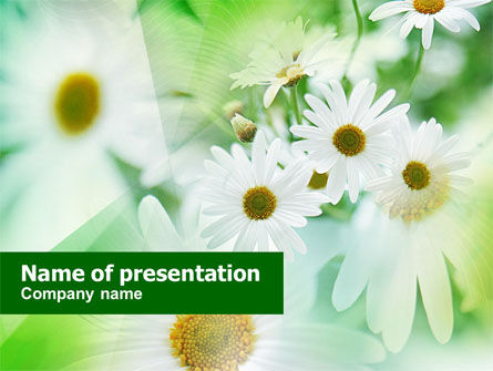 Nature & Environment: Daisies PowerPoint Template #00874
