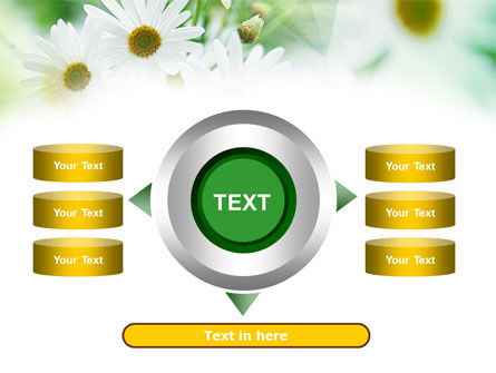 Daisies PowerPoint Template Slide 12