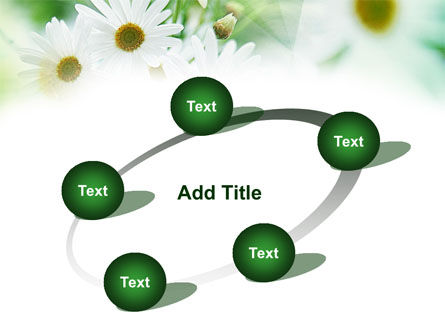 Daisies PowerPoint Template Slide 14