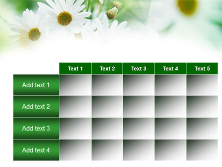 Daisies PowerPoint Template Slide 15
