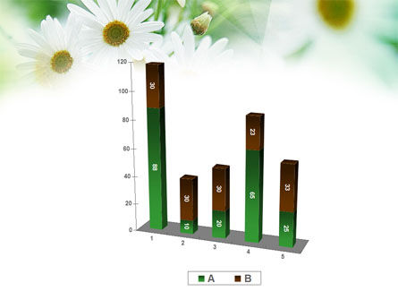 Daisies PowerPoint Template Slide 17
