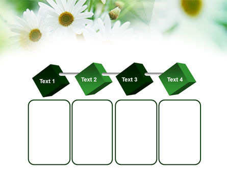 Daisies PowerPoint Template Slide 18