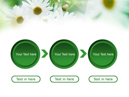 Daisies PowerPoint Template Slide 5