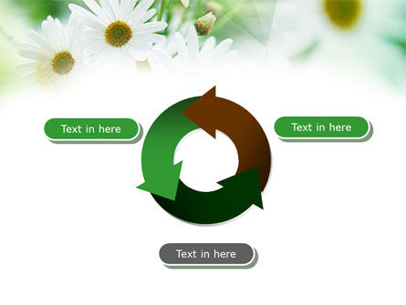 Daisies PowerPoint Template Slide 9