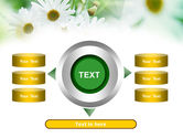 Daisies PowerPoint Template#12