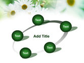 Daisies PowerPoint Template#14