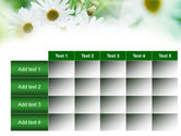 Daisies PowerPoint Template#15