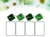 Daisies PowerPoint Template#18