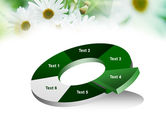 Daisies PowerPoint Template#19