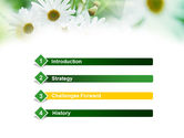 Daisies PowerPoint Template#3