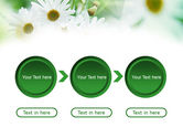 Daisies PowerPoint Template#5