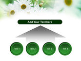 Daisies PowerPoint Template#8