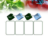 Tomato And Cabbage PowerPoint Template#18
