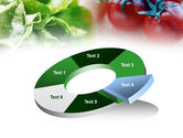 Tomato And Cabbage PowerPoint Template#19