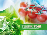 Tomato And Cabbage PowerPoint Template#20