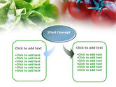 Tomato And Cabbage PowerPoint Template#4