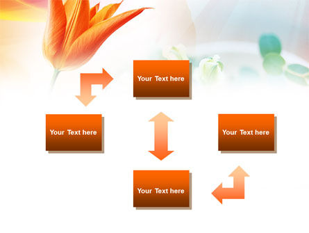 Carrot Colored Tulip PowerPoint Template, Slide 4, 00884, Nature & Environment — PoweredTemplate.com