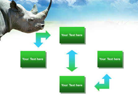 White Rhinoceros PowerPoint Template, Slide 4, 00890, Animals and Pets — PoweredTemplate.com