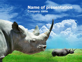 Animals and Pets: White Rhinoceros PowerPoint Template #00890