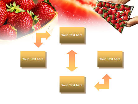 Strawberry Farming PowerPoint Template, Slide 4, 00911, Food & Beverage — PoweredTemplate.com