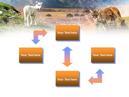 Life Of Mammalian Predators PowerPoint Template Slide 4