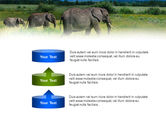 Plains Of Kilimanjaro National Park PowerPoint Template#10
