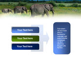 Plains Of Kilimanjaro National Park PowerPoint Template#11