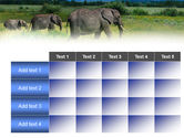 Plains Of Kilimanjaro National Park PowerPoint Template#15