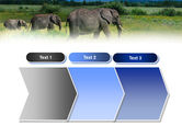 Plains Of Kilimanjaro National Park PowerPoint Template#16