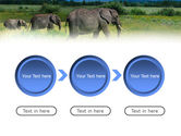 Plains Of Kilimanjaro National Park PowerPoint Template#5