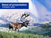 Animals and Pets: Alaska Elk PowerPoint Template #00928
