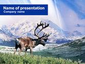 Animals and Pets: Alaska Elanden PowerPoint Template #00928