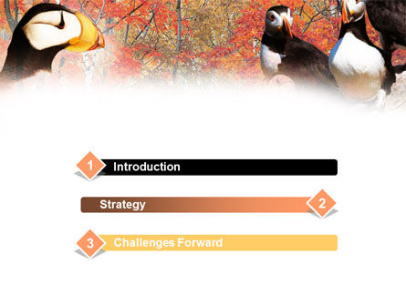 Ornithology PowerPoint Template Slide 3