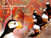Nature & Environment: Ornithology PowerPoint Template #00937
