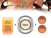 Ornithology PowerPoint Template#12