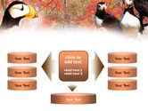Ornithology PowerPoint Template#13