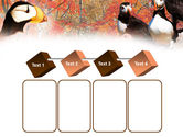 Ornithology PowerPoint Template#18