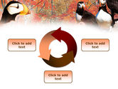 Ornithology PowerPoint Template#9