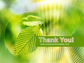 Green Leaf PowerPoint Template#20