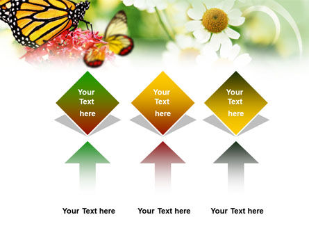 Machaon Butterfly PowerPoint Template Slide 5
