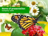 Nature & Environment: Modello PowerPoint - Macaone farfalla #00956