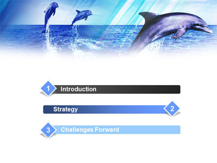 Dolphins PowerPoint Template, Slide 3, 00958, Animals and Pets — PoweredTemplate.com