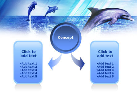 Dolphins PowerPoint Template, Slide 4, 00958, Animals and Pets — PoweredTemplate.com