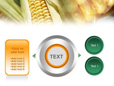 Maize PowerPoint Template Slide 12