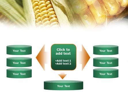 Maize PowerPoint Template Slide 13