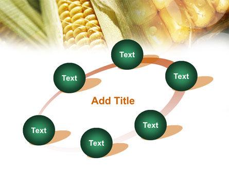 Maize PowerPoint Template Slide 14